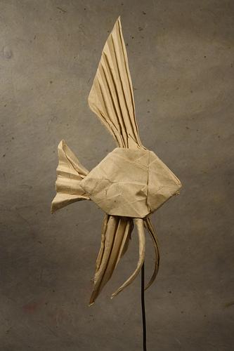 Origami Veiltail Angelfish