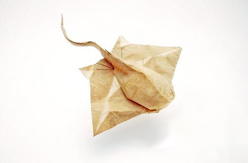 Origami Eagle ray