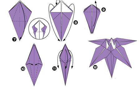 Iris scheme, part 2