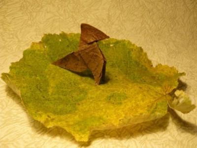 Пахарита, сделанная из ольхового листа
