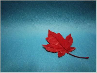 Кленовый лист из цветной бумаги