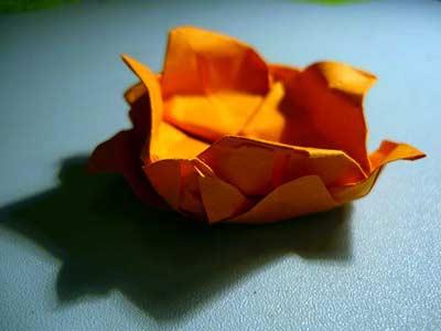 лотос из бумаги