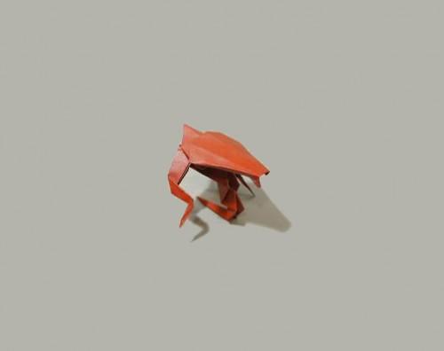 Гидролиск оригами
