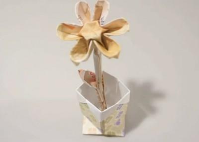 Stephen Hecht цветок