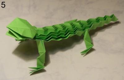 ящерица с ребристой спинкой схема 5