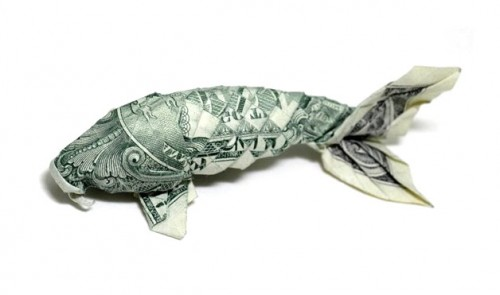 Золотая рыбка Dollar Koi