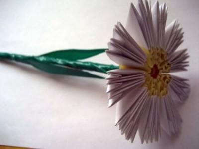 Модульное оригами ромашка пошагово