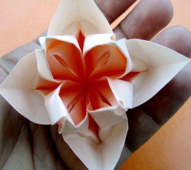 Оригами цветок по схеме Christine Edison