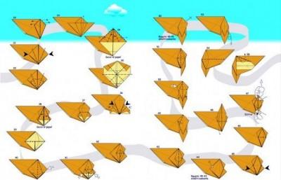 Схема складывания белка из мультфильма