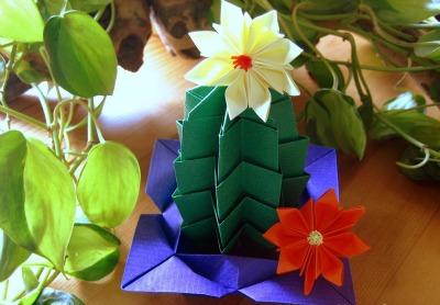 Оригами цветущий кактус видео