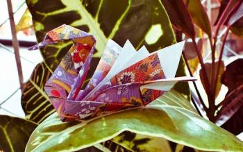 Оригами для начинающих лебедь за схемой Robert J. Lang