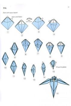 Схема сборки оригами Ирис от Tadashi Mori