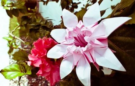 Мастер-класс цветок оригами «Маргаритка» за схемой Mio Tsugawa