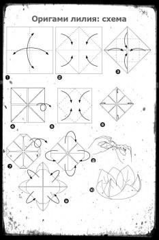 Оригами лилия схема